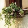 №004 Кованая цветочница
