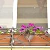 №038 Кованая цветочница Жуковский